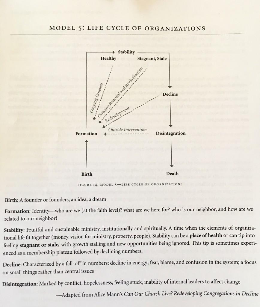 life cycle model