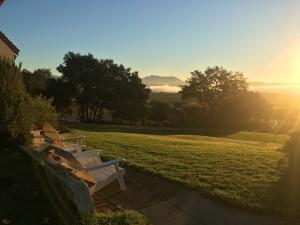 ranch lawn